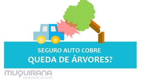 seguro automovel cobre queda de árvore